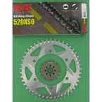 520XSO Chain and Sprocket Conversion Kit - 3066-978R