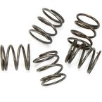 Pushrod Cover Springs - 17947-36