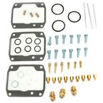 Carb Rebuild Kit - 1003-1608