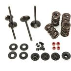 Black Diamond Engine Valve Kit - 20-22650