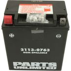 AGM Maintenance-Free Battery - 2113-0763
