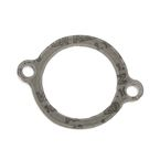 Exhaust Port Gasket - EX419043F