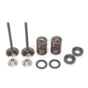 Moose Exhaust Valve Kit  - 0926-2464
