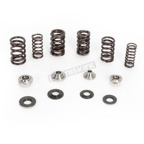 Kibblewhite Precision Machining Valve Spring Kit - 80-80900