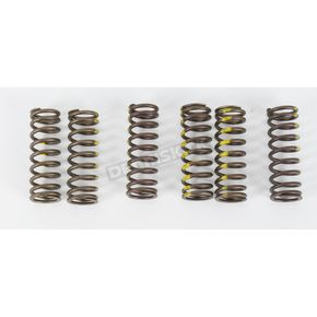 Pro Circuit Clutch Spring Set - CSS05450