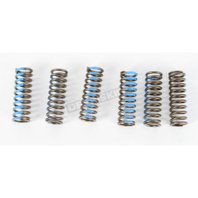 Pro Circuit Clutch Spring Set - CSY06450