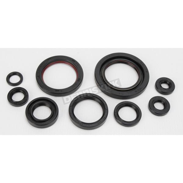 Moose Oil Seal Kit - 0935-0385