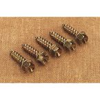 1 in. Original Gold Ice Screws - 1250-0061
