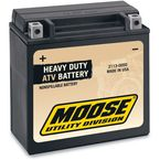 Heavy Duty 12-Volt AGM Battery - 2113-0050