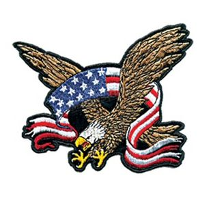 Hot Leathers 3 in. x 2 in. Eagle and Flag Patch - PPA1182