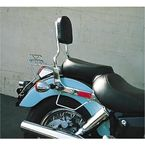Sissy Bar w/Studded Pad - 290-10