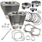 Stone Gray 117 in. Big Bore Cylinder and Piston Kit - 910-0474