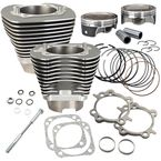 Stone Gray 124 in. Big Bore Cylinder and Piston Kit - 910-0469
