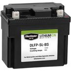 Lithium Ion Battery - 780802