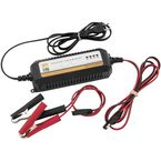 Lithium Ion Battery Charger - 150906