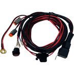 14 foot D2 Wire Harness - 40196