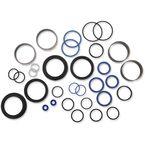 Fork Seal/Bushing Kit - PWFFK-T10-000