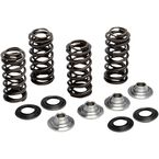 Stainless Steel Conversion Valve Spring Kit - 80-81400