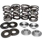 Lightweight Intake/Exhaust Valve Spring Kit (.500