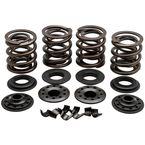 OEM Replacement Valve Spring Kit - 20-20850