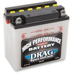 High Performance 12-Volt Lead Acid Battery - 2113-0007