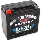 High Performance 12-Volt AGM Battery - 2113-0011