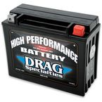 High Performance 12-Volt AGM Battery - 2113-0013