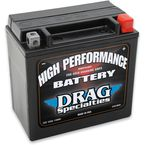 High Performance 12-Volt AGM Battery - 2113-0014