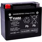 High-Performance AGM Maintenance Free Battery - YUAM72RBH