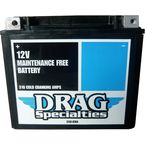 Activated High-Performance AGM Maintenance Free Battery - 2113-0764