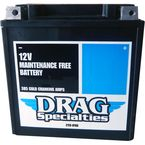 Factory-Activated AGM Maintenance-Free Battery - 2113-0766