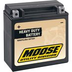 Non-Spillable 12-Volt Battery - 2113-0046