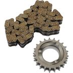 21-Tooth Compensating Sprocket/74 Link Chain Kit - DS-191056