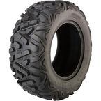 Switchback 25X10-12 Tire - 0320-0725