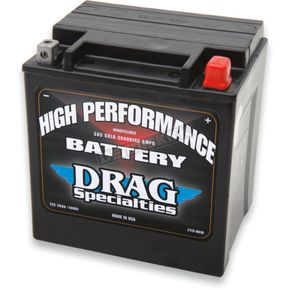 High Performance 12-Volt AGM Battery - 2113-0010