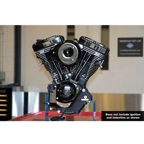 V111 Long Block Black Edition Engine - 310-0829