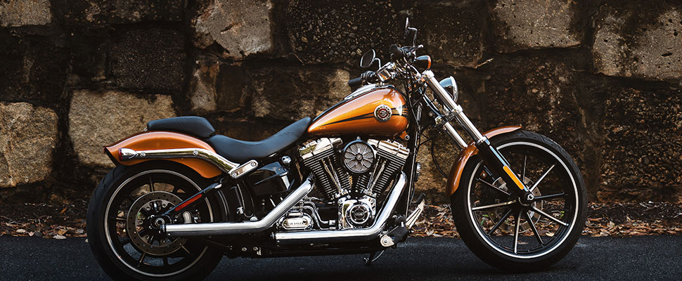 Harley-Davidson® Categories